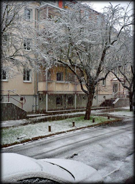Schnee in der Blumenstraße